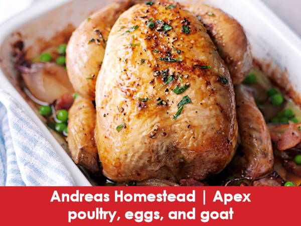 Andreas Homestead, Apex, Poultry & Eggs